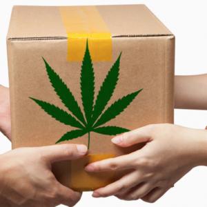 Marijuana consegnata a domicilio. Succede a Reggio Emilia
