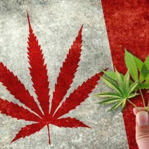 Legalizzazione Canada