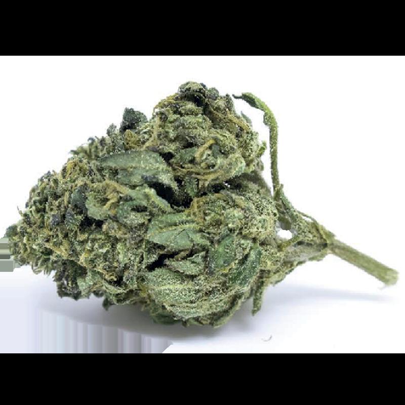 soul dragon light cannabis