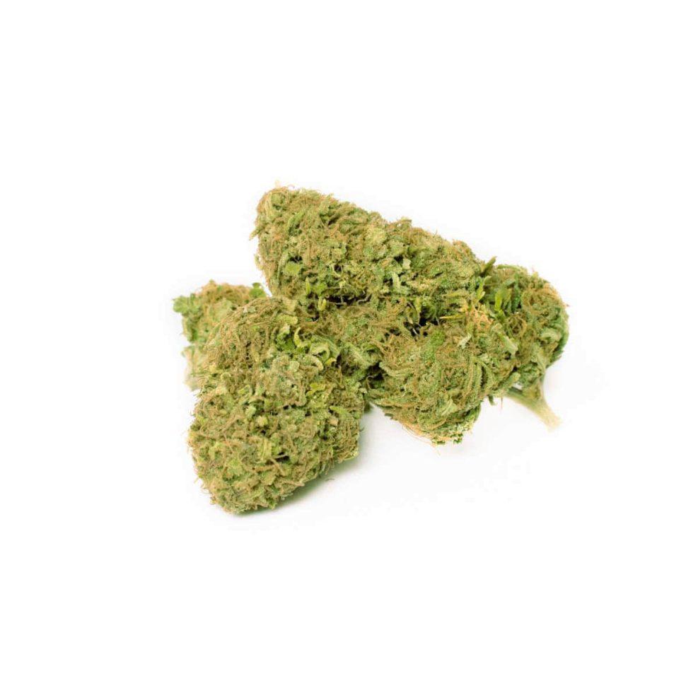 Therapy Cannabis Light CBD Erba Legale | MYHEMPIRE