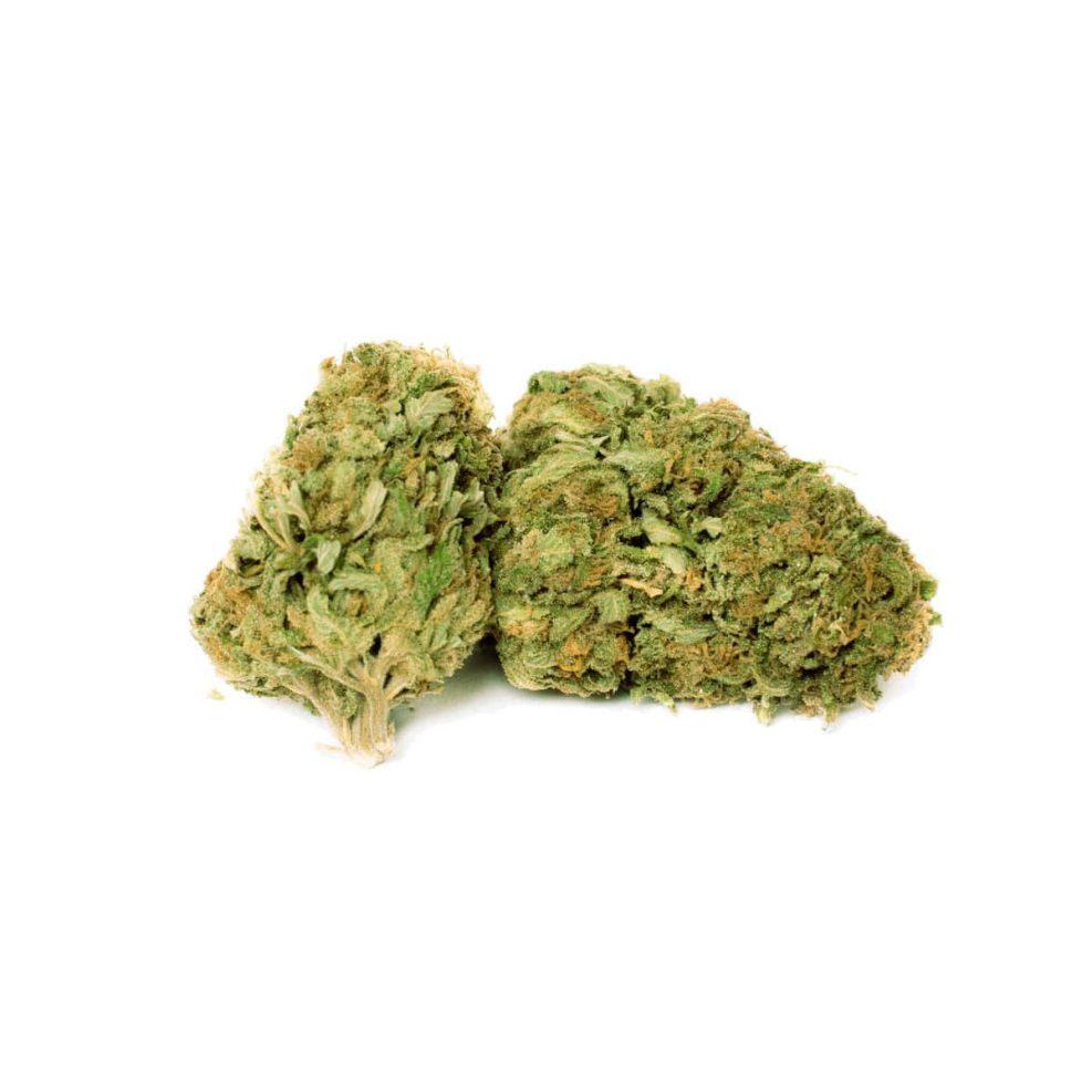 Harlequin CBD Cannabis Light - MYHEMPIRE