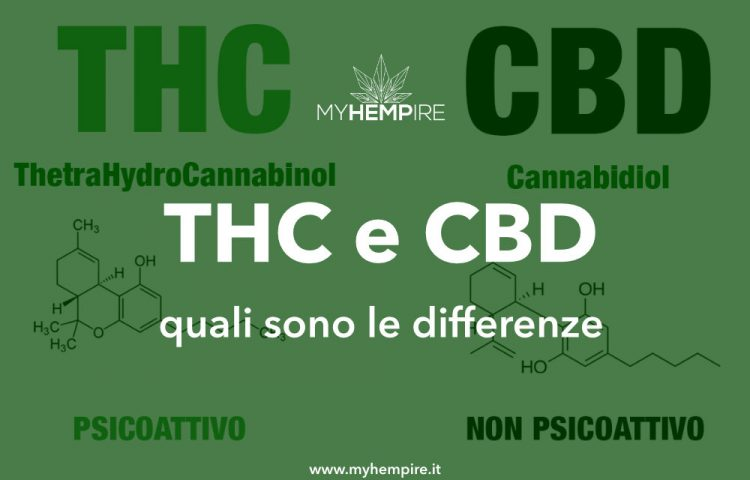 THC e CBD: Cosa sono? Ecco le differenze
